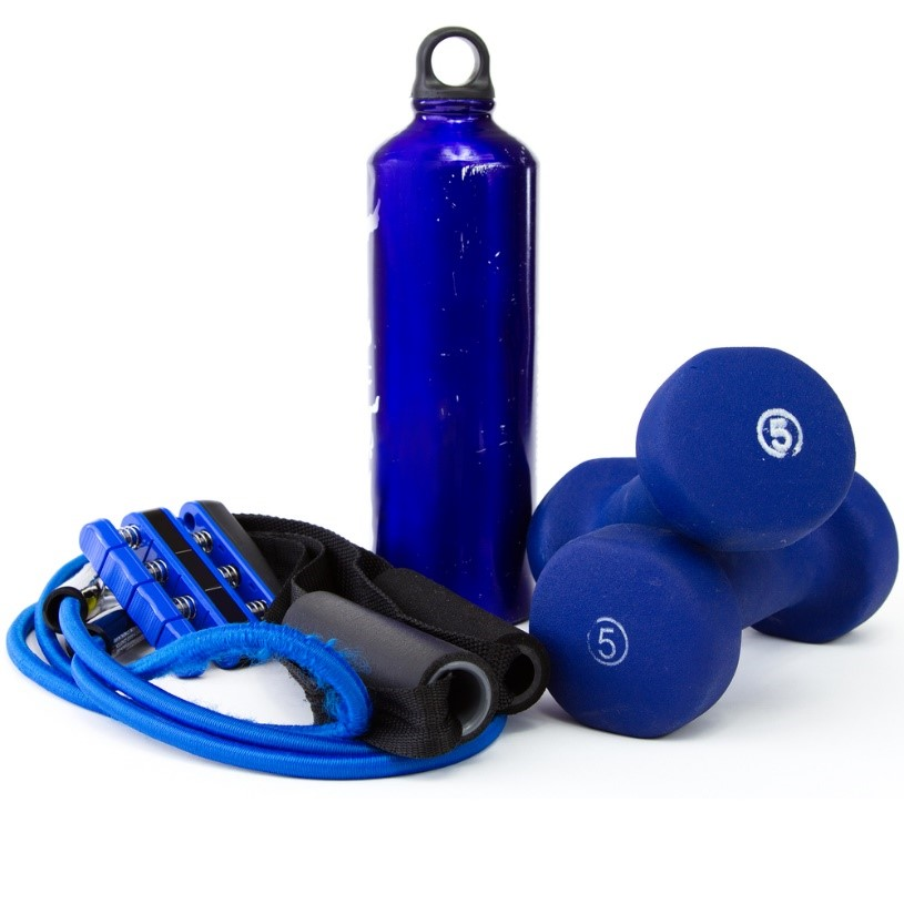 bungee cords gym equipment