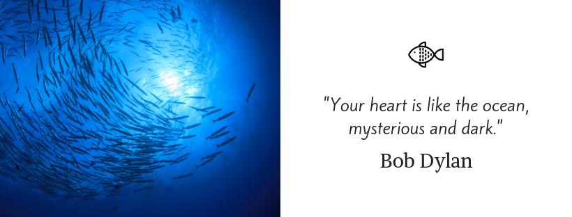 sailing quotes - Bob Dylan