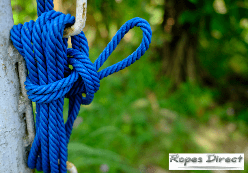 Polyester rope tied to tree