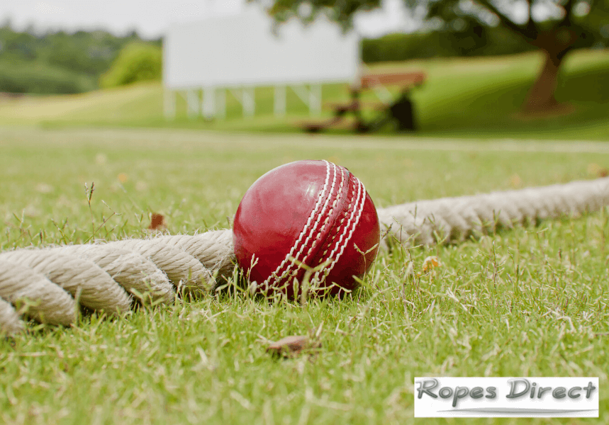 Pitch with cricket boundary ropes