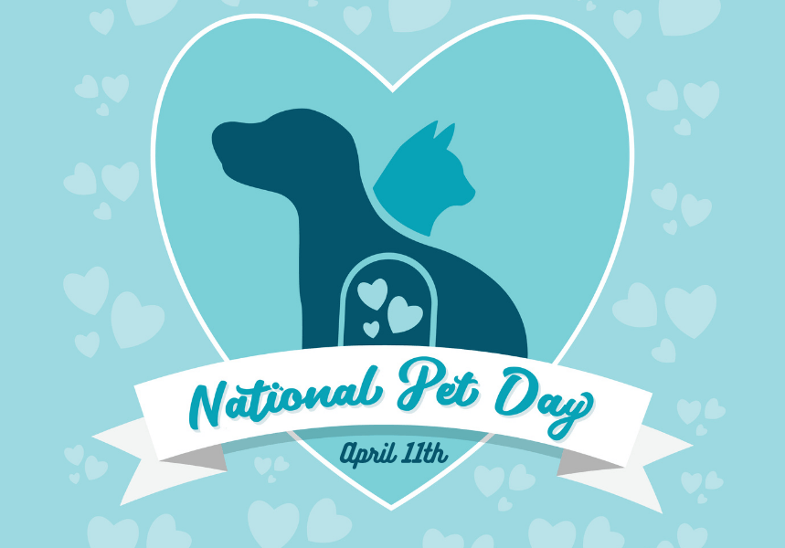 Advert for National Pet Day