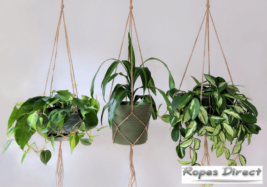 Examples of rope plant hangers