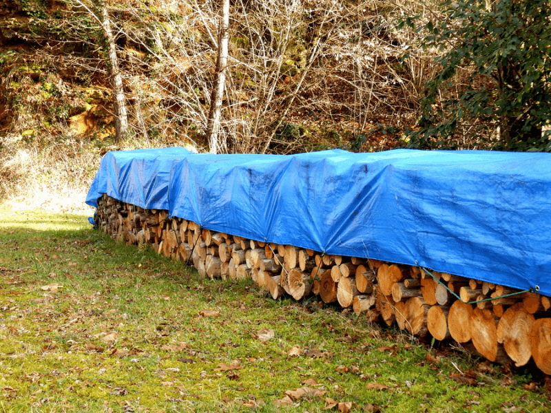 Wood stacked for seasoning