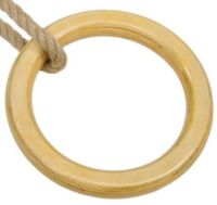 Wooden Gym Ring